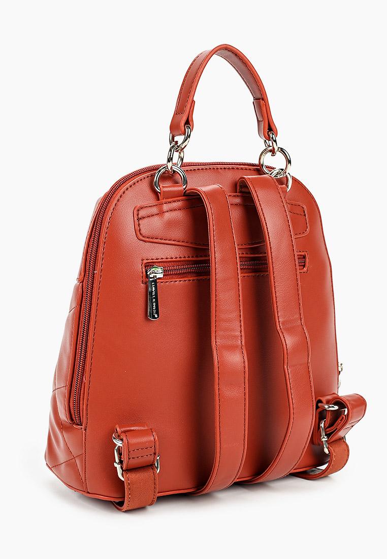 Городской рюкзак David Jones (Дэвид Джонс) 6420-1_охра: изображение 2