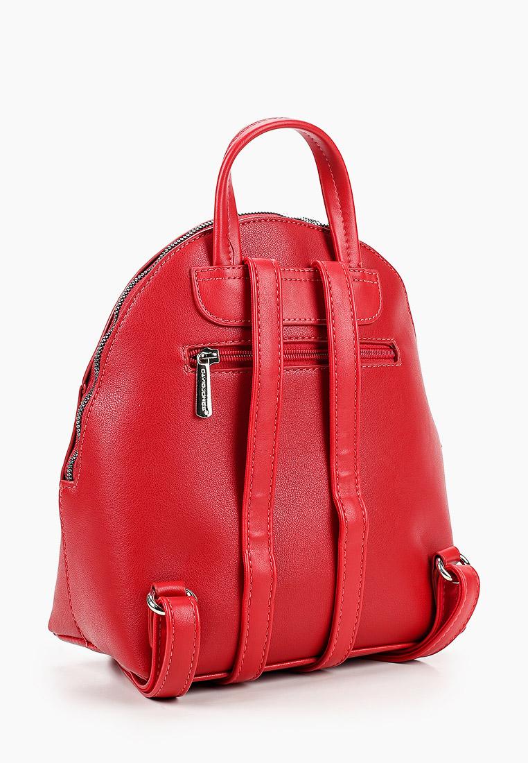 Городской рюкзак David Jones (Дэвид Джонс) 6415-3_красный: изображение 2
