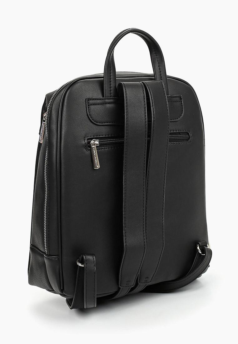 Городской рюкзак David Jones (Дэвид Джонс) CM5842_черный: изображение 2