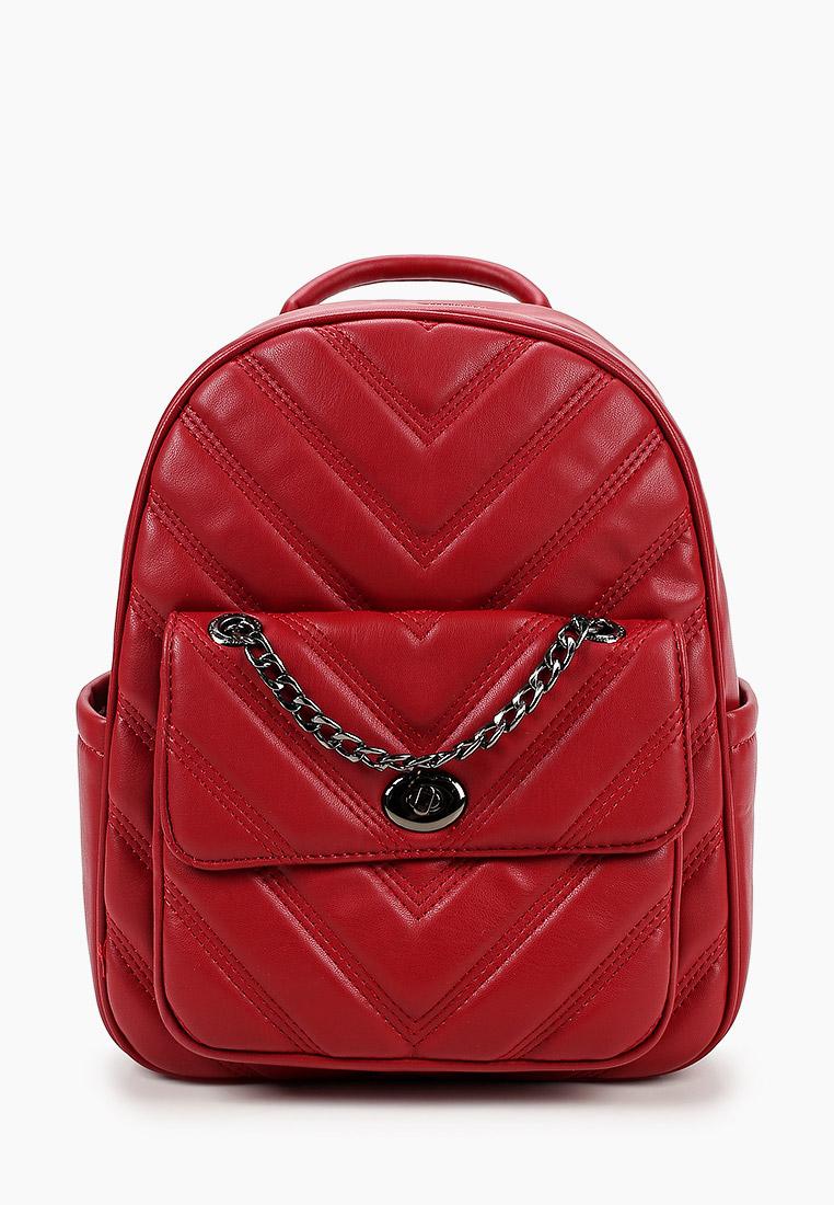 Городской рюкзак David Jones (Дэвид Джонс) CM5863_красный