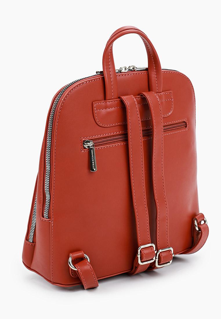 Городской рюкзак David Jones (Дэвид Джонс) CM6031_охра: изображение 2