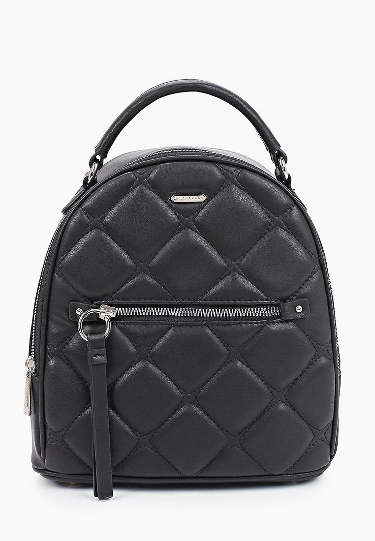 Городской рюкзак David Jones (Дэвид Джонс) 6520-2_черный