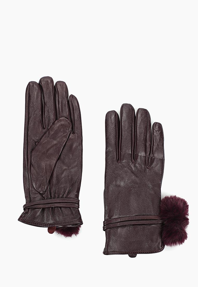 Женские перчатки Dorothy Perkins (Дороти Перкинс) 11247612
