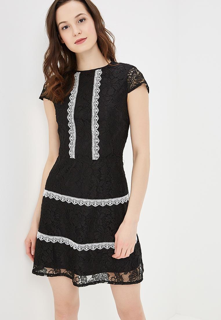 Вечернее / коктейльное платье Dorothy Perkins (Дороти Перкинс) 7566030