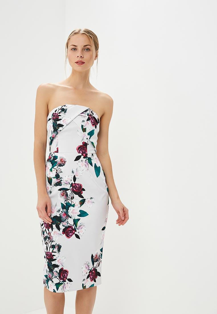 Вечернее / коктейльное платье Dorothy Perkins (Дороти Перкинс) 7578262