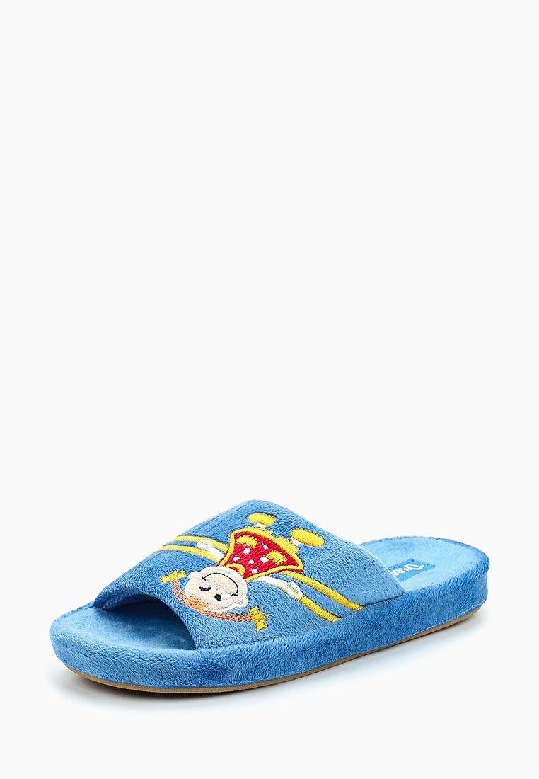 Домашняя обувь Dream Feet DF12-34C: изображение 1