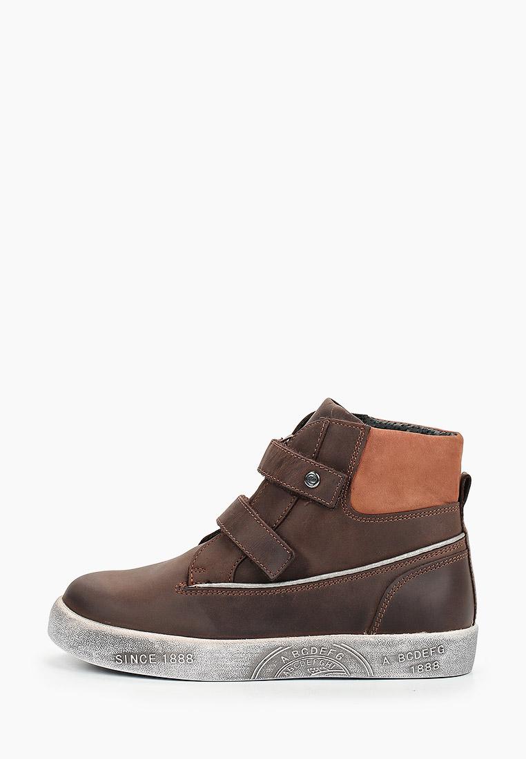 Ботинки для мальчиков Elegami 5-521511803