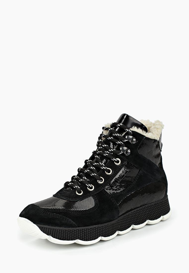 Женские ботинки El Tempo RR8_01914-399-843_BLACK