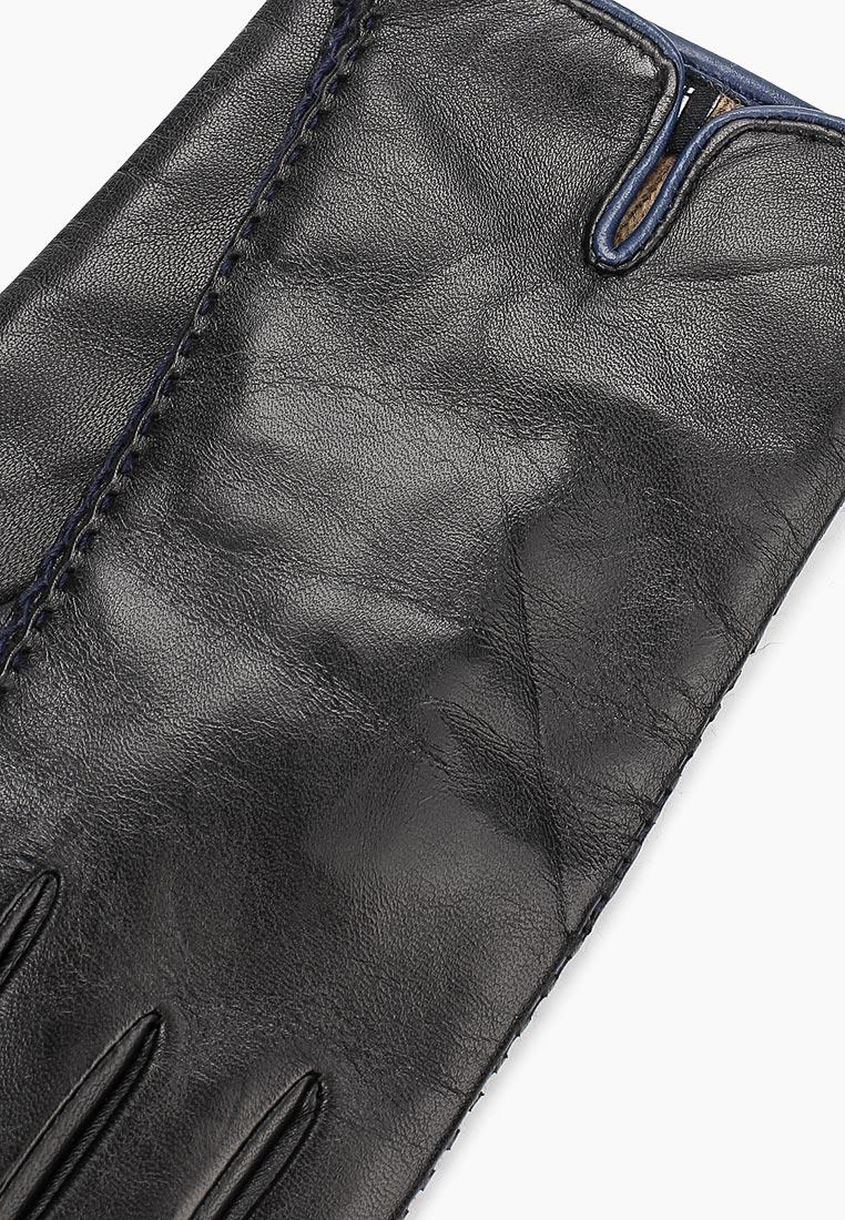 Женские перчатки Fabretti 12.66-1/12 black/blue: изображение 2