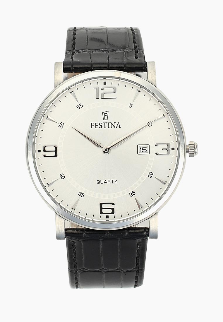 Мужские часы Festina F16476/3