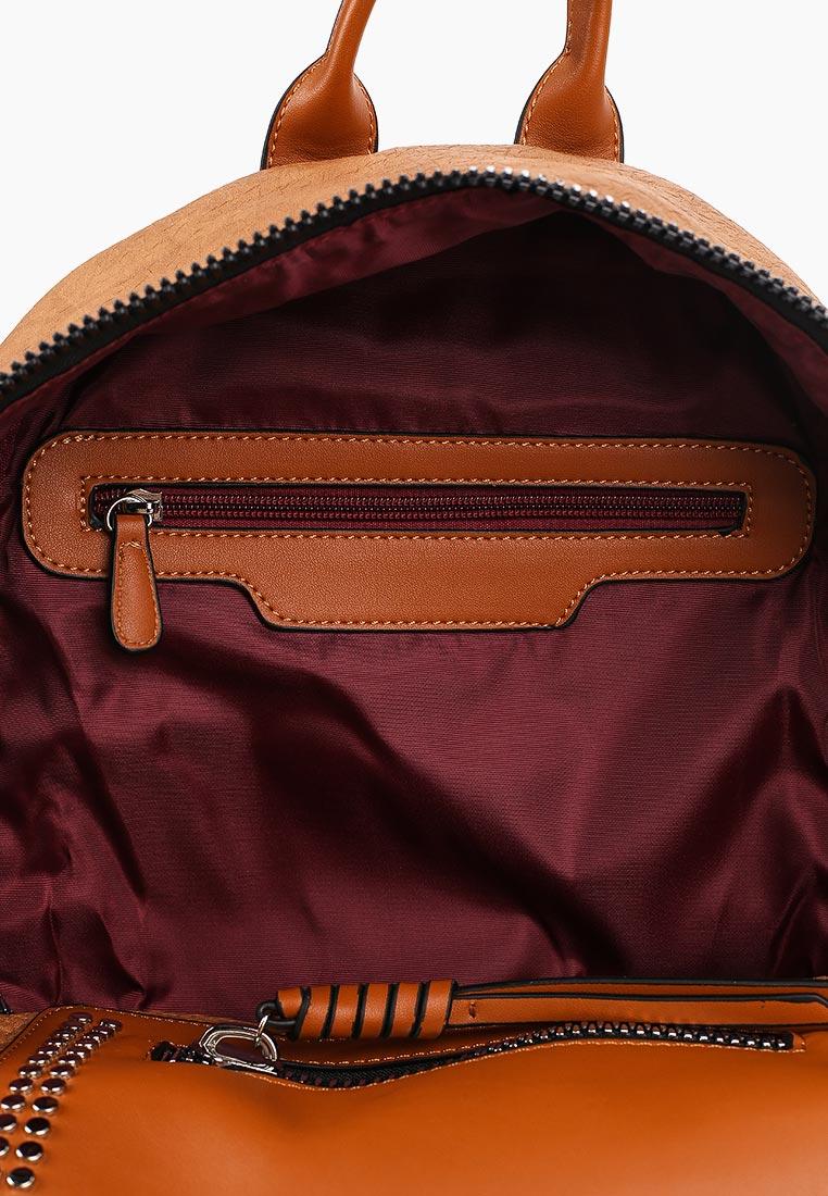 Flioraj (Флиораж) 62452 brown: изображение 3