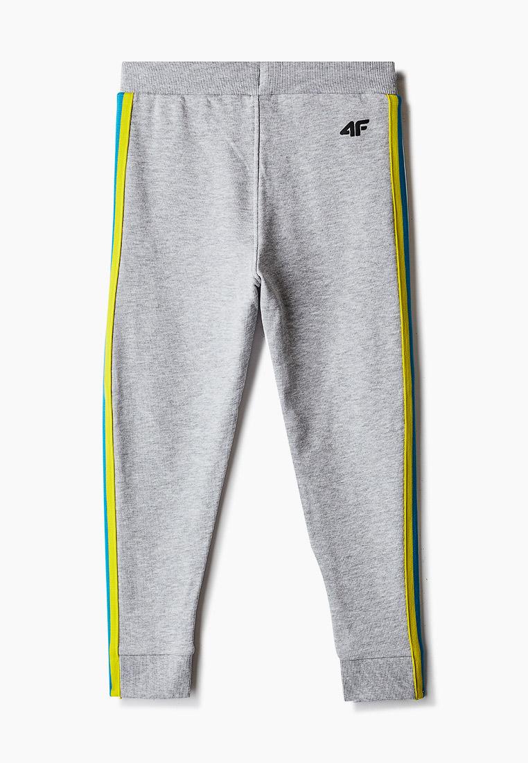Спортивные брюки 4F (4Ф) HJZ20-JSPMD002: изображение 2