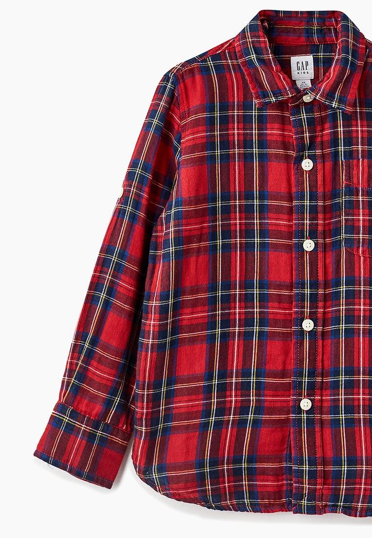 Рубашка Gap 370517: изображение 3