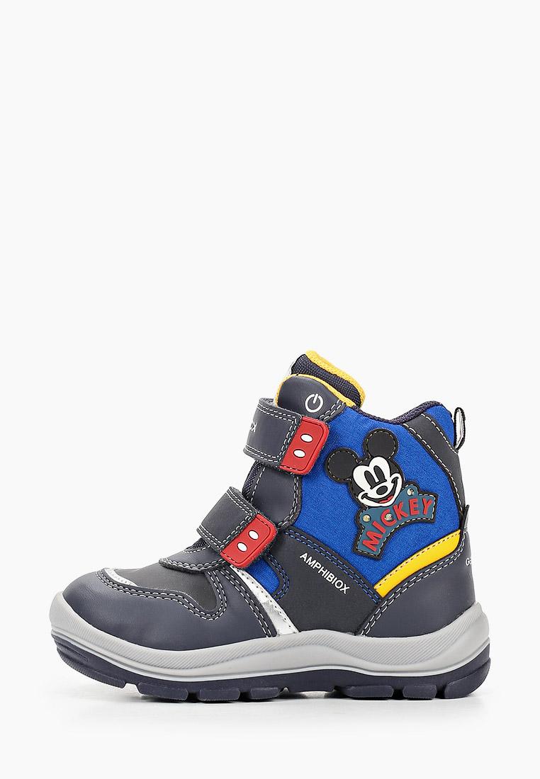 Ботинки для мальчиков Geox B043VC054FUC4226