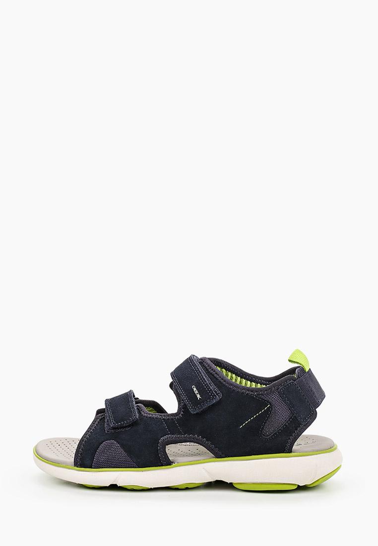 Мужские сандалии Geox U926WB00022C4064