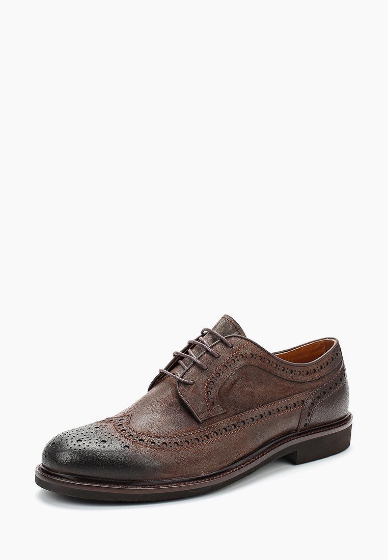 Мужские туфли Guido Grozzi 7028A-1C GG: изображение 6