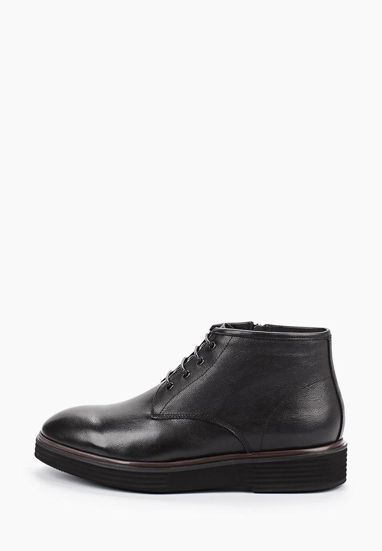 Мужские ботинки Guido Grozzi QQ566M-1-B317M GG