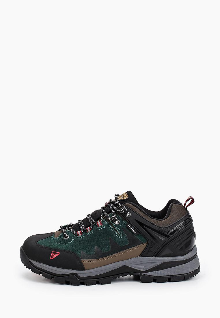 Мужские ботинки Icepeak (Айспик) 478209100IV