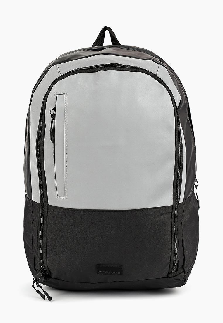 Городской рюкзак Icepeak 595300IV