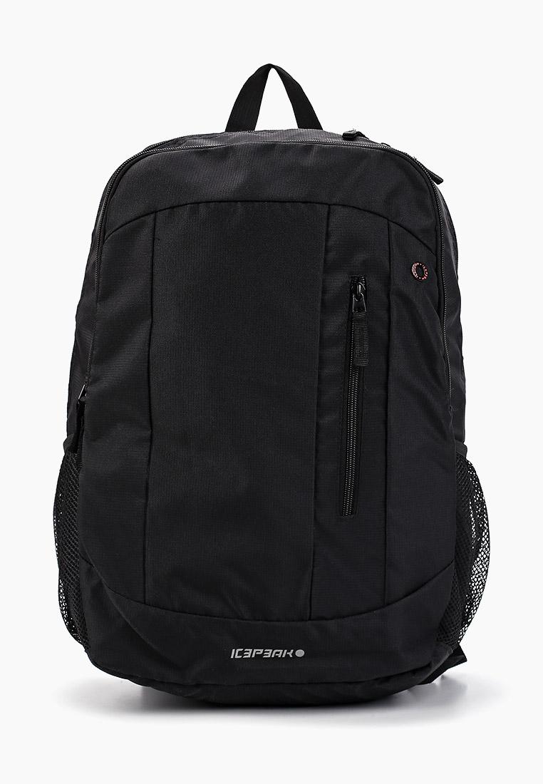Спортивный рюкзак Icepeak 459534000IV