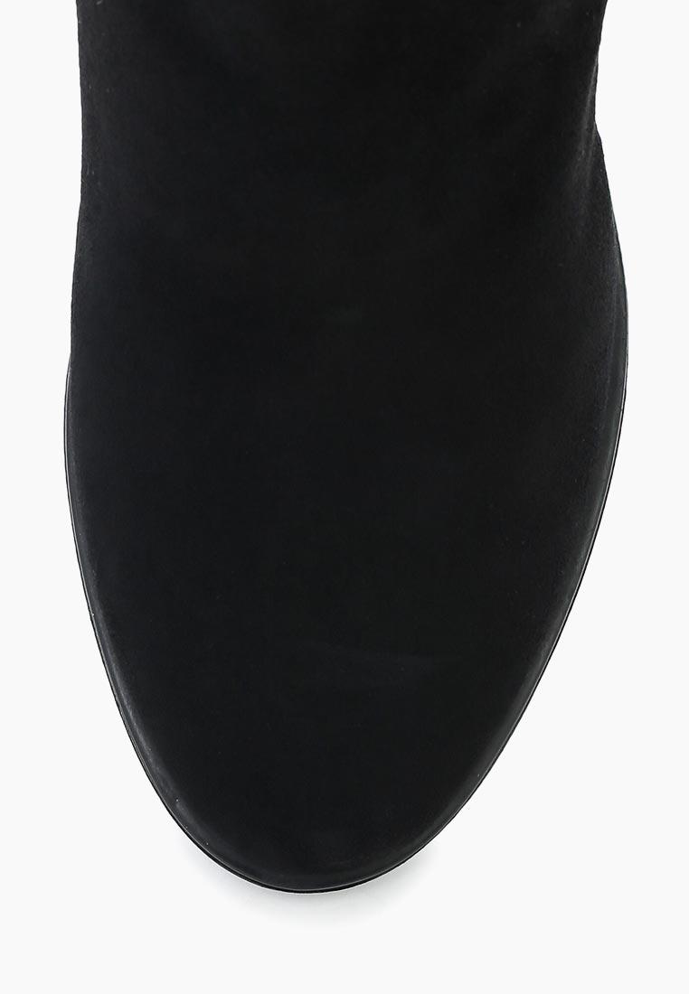 Ботфорты Ivolga (Иволга) 33-38-17-3: изображение 10