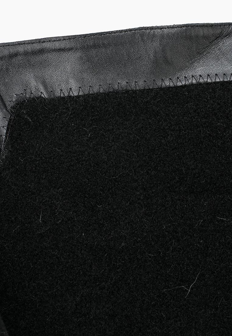 Ботфорты Ivolga (Иволга) 33-38-17-3: изображение 11