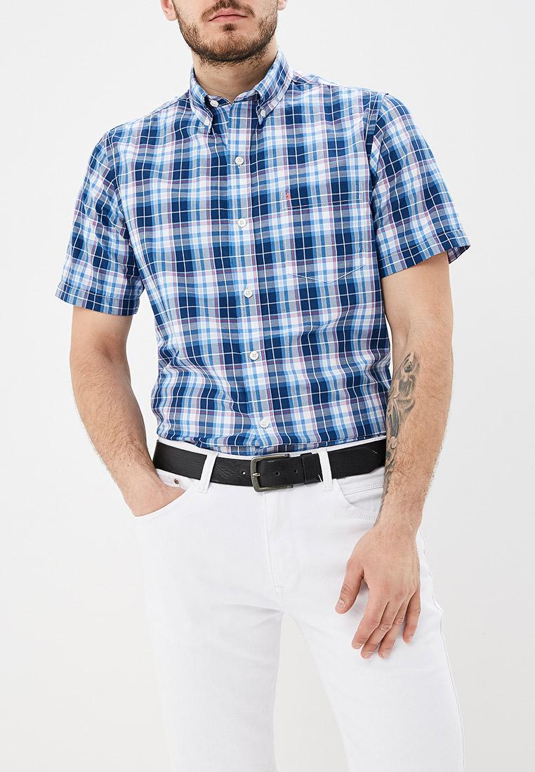 Рубашка с коротким рукавом Izod 00045EE131