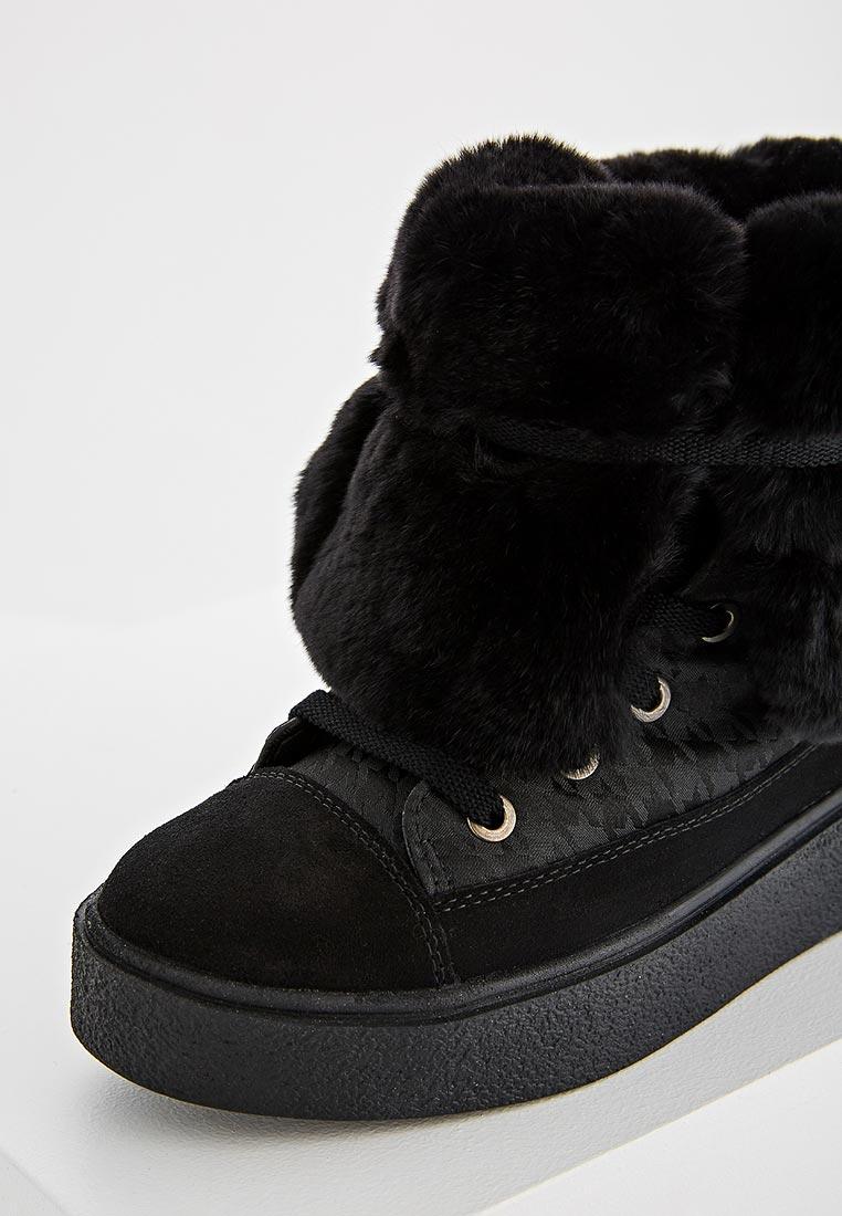 Женские ботинки Jog Dog 15006DR: изображение 10