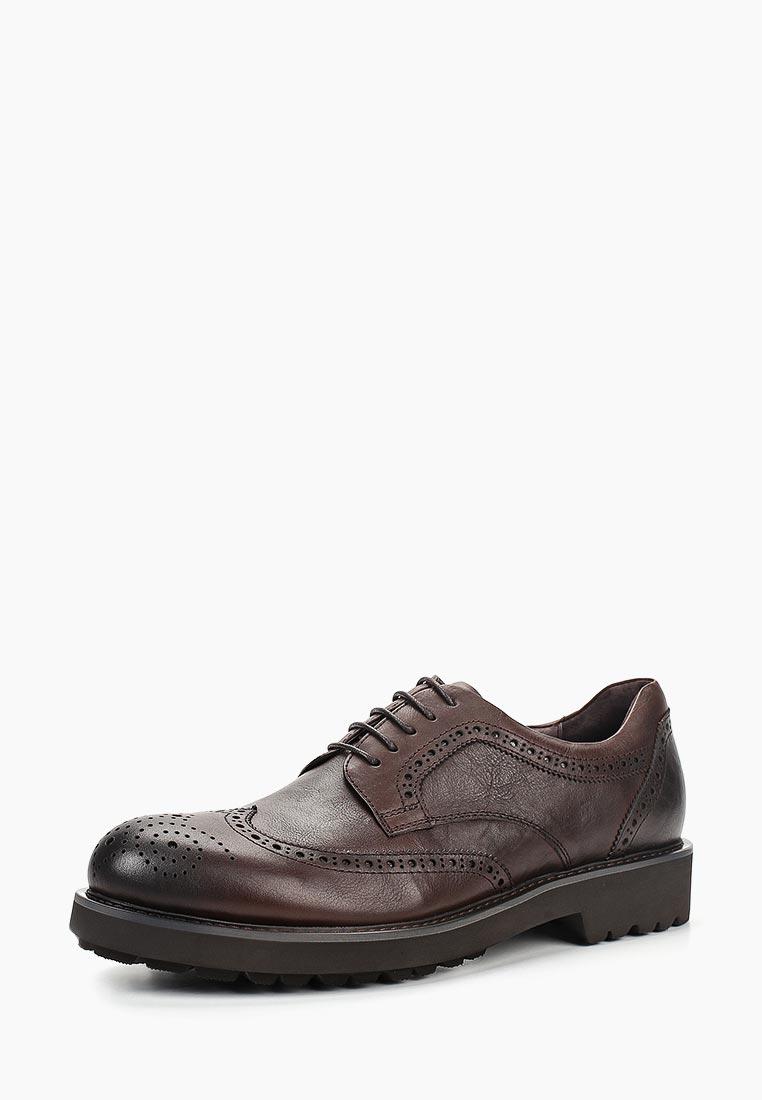 Мужские туфли Just Couture 8JC.IT70744.K