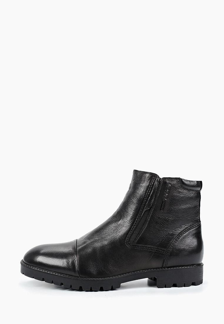 Мужские ботинки Just Couture 6JC.DS59210.M
