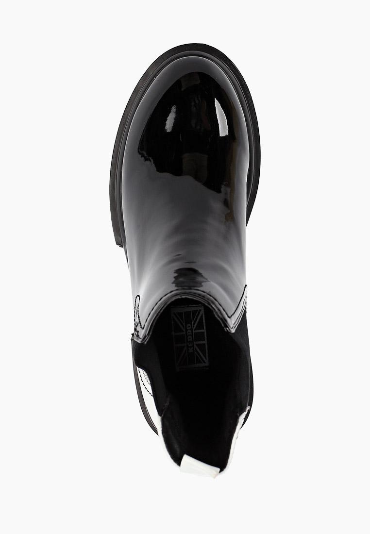 Женские ботинки Keddo (Кеддо) 898276/03-08: изображение 4