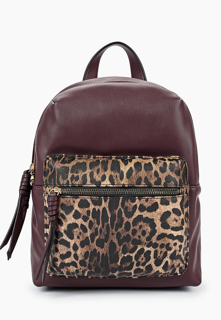Городской рюкзак Keddo (Кеддо) 398101/05-02