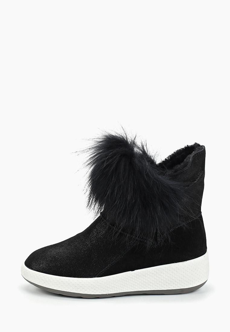 Женские полусапоги King Boots (Кинг Бутс) KB674SWF