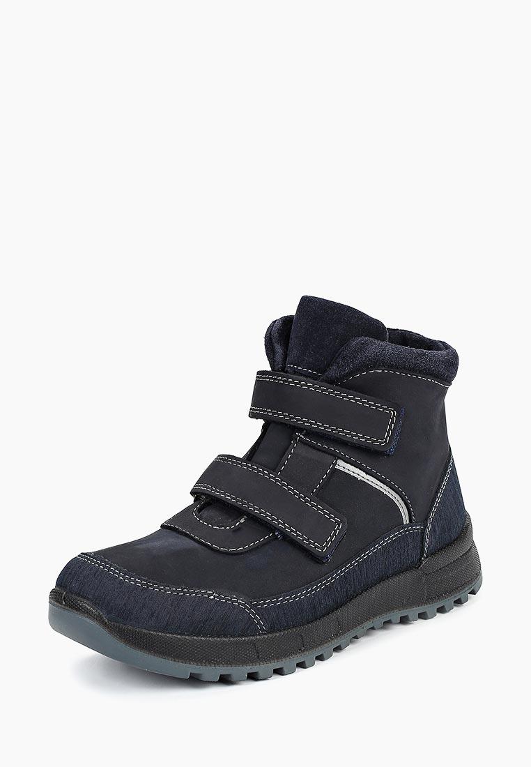 Ботинки для мальчиков Котофей 652125-52