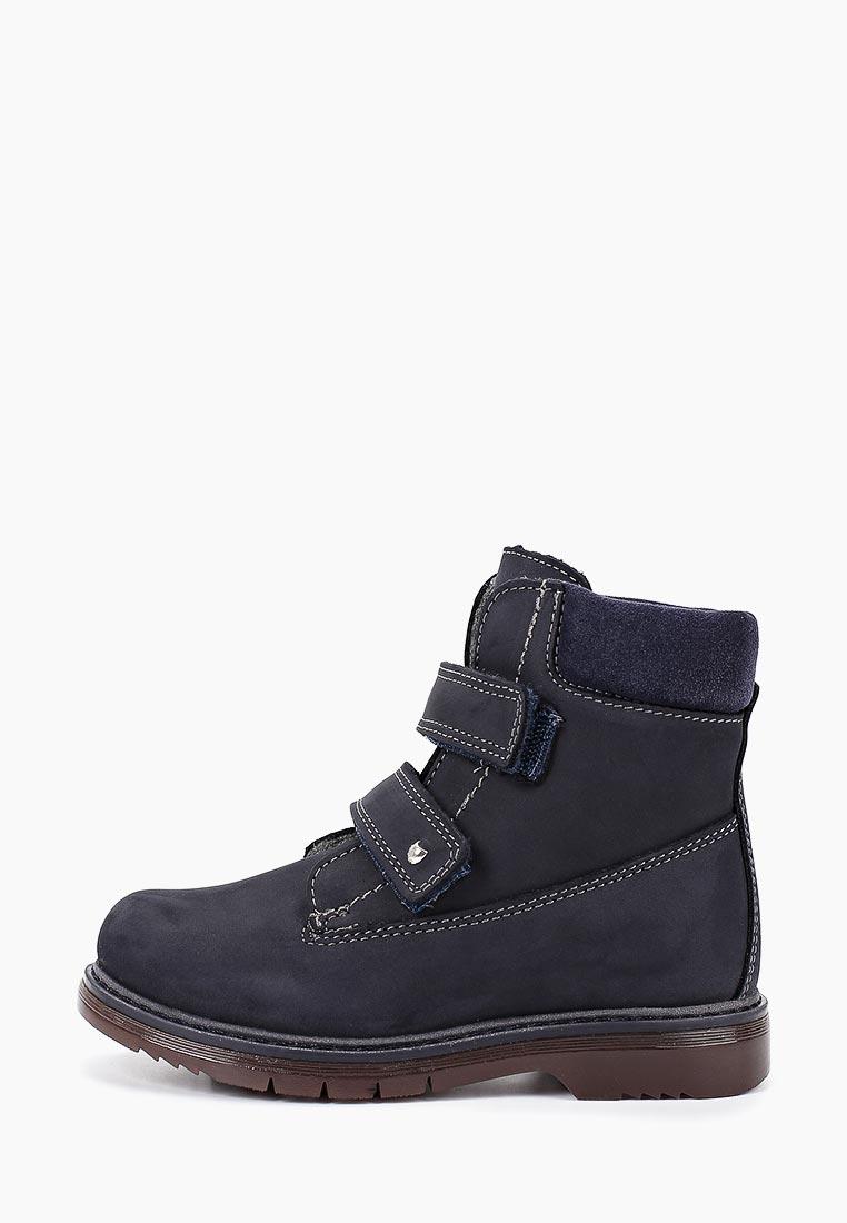 Ботинки для мальчиков Котофей 552153-33