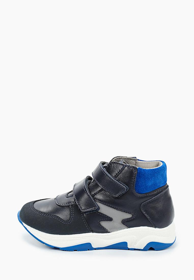 Ботинки для мальчиков Котофей 352269-22
