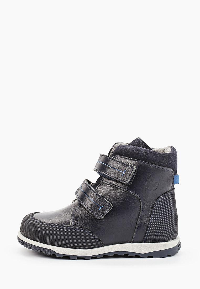 Ботинки для мальчиков Котофей 352241-34