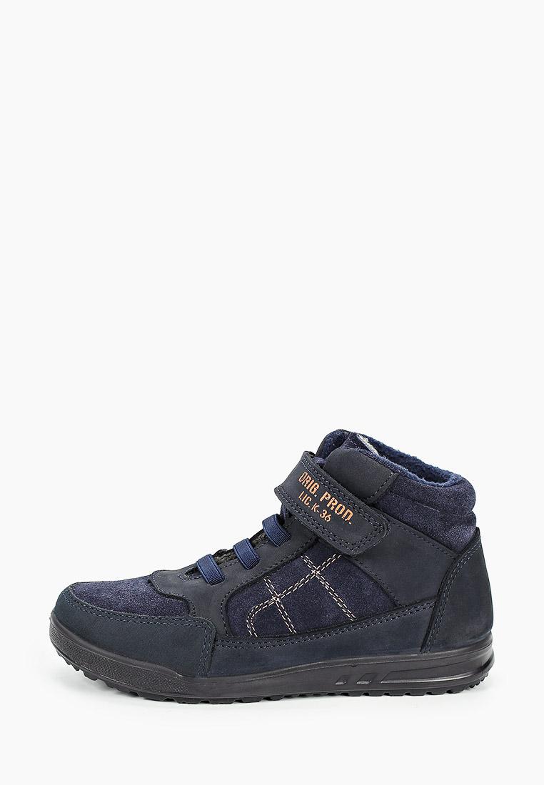 Ботинки для мальчиков Котофей 552224-31