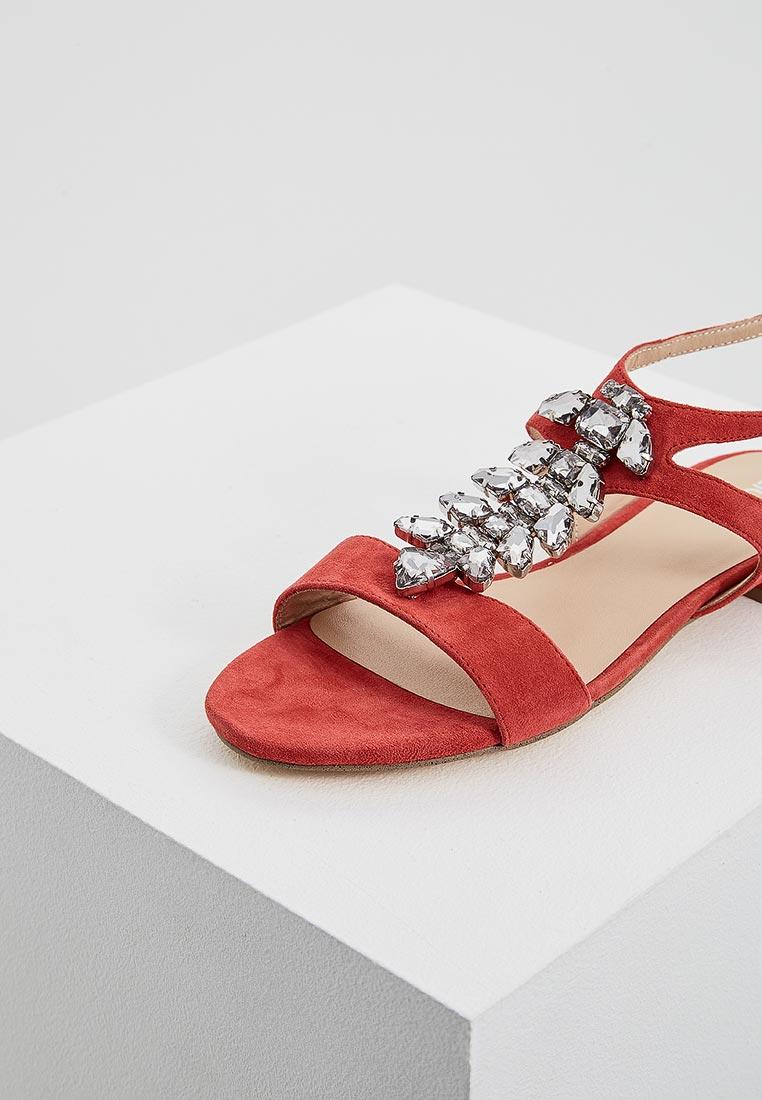 Женские сандалии Liu Jo (Лиу Джо) s18035 p0021: изображение 2