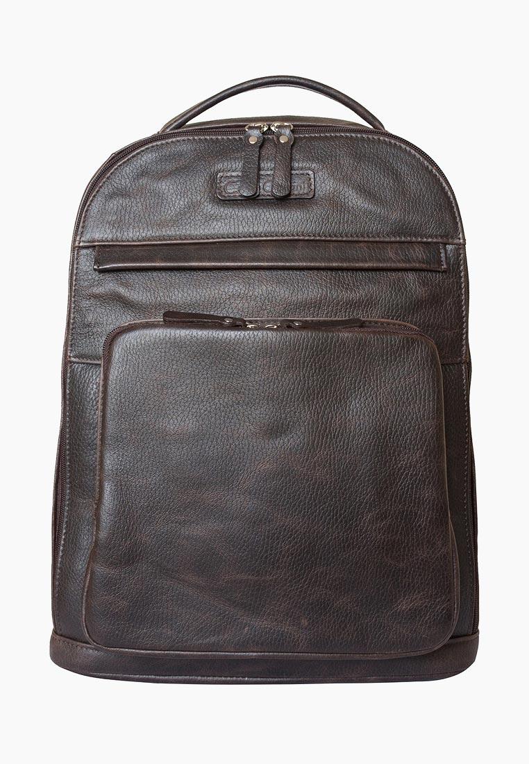 Городской рюкзак Carlo Gattini 3022-04: изображение 1