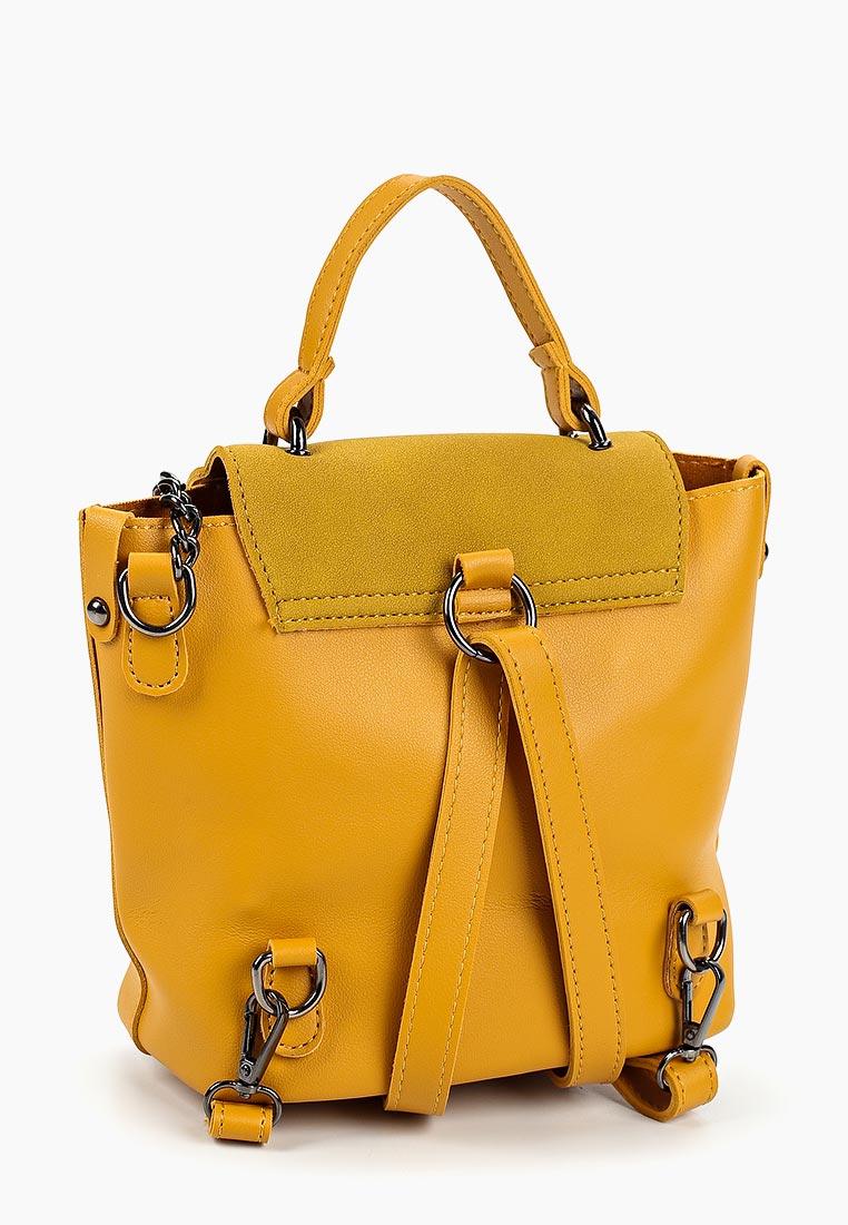679a555ed941 Городской рюкзак женский Ors Oro DW-828 внешний материал ...