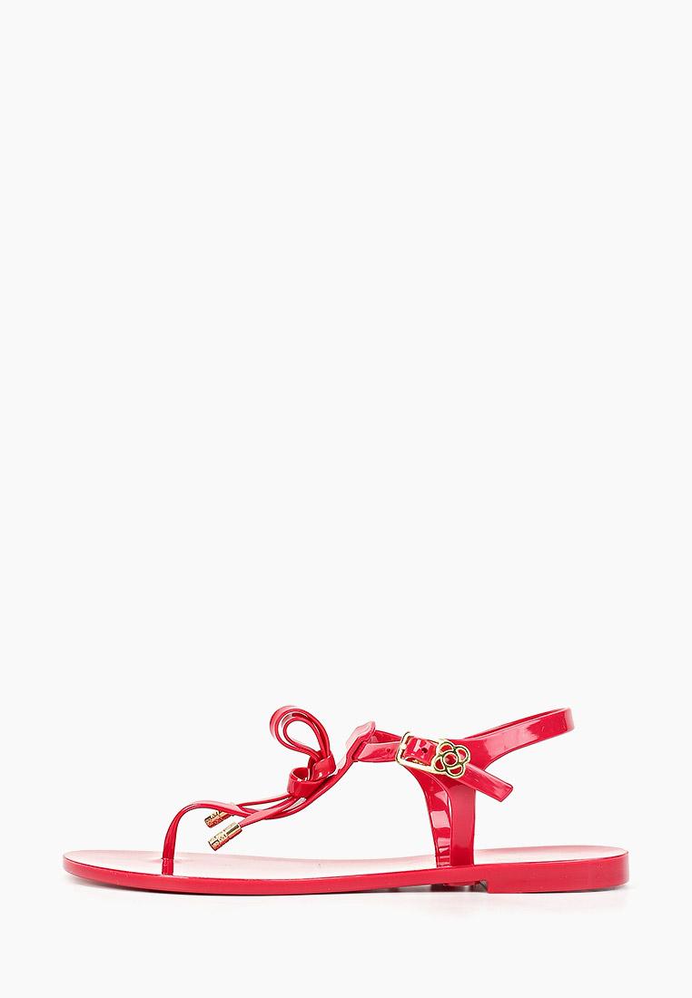 Женские спортивные сандалии Petite Jolie PJ3854