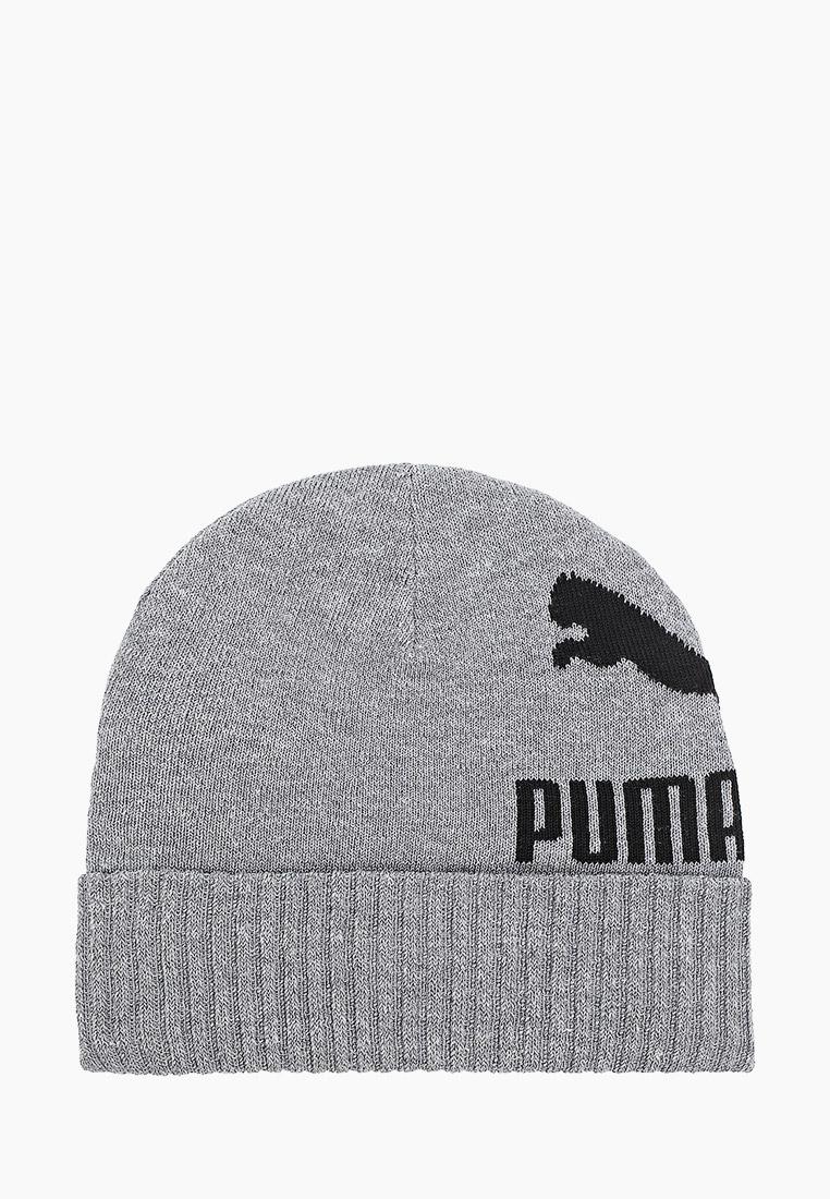 Головной убор Puma 22849