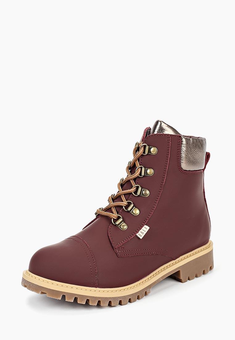 Ботинки для мальчиков Ralf Ringer (Ральф Рингер) 854209БО