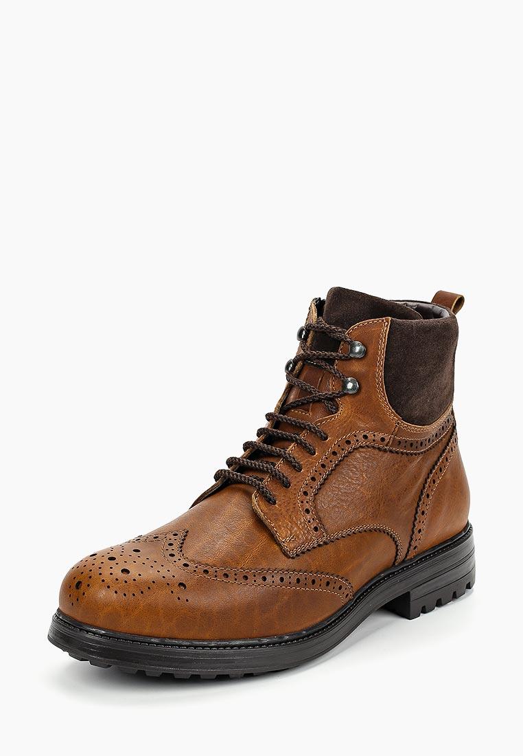 Мужские ботинки Ralf Ringer (Ральф Рингер) 085302СКМ