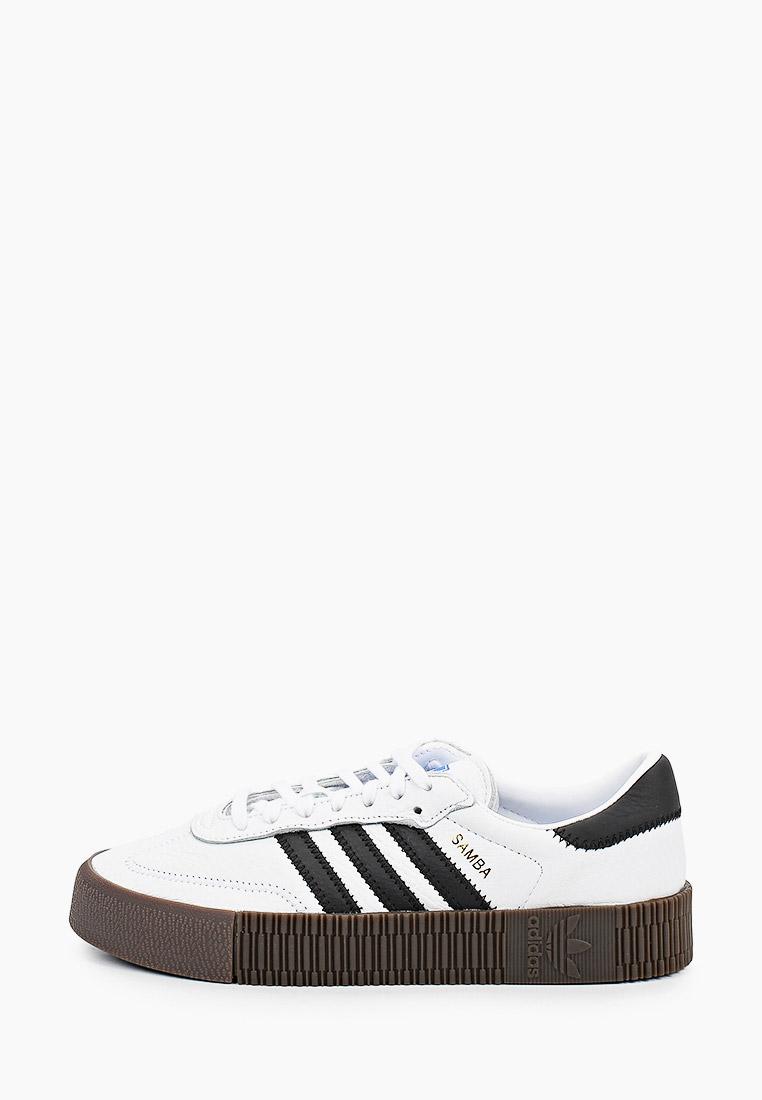 Женские кеды Adidas Originals (Адидас Ориджиналс) AQ1134