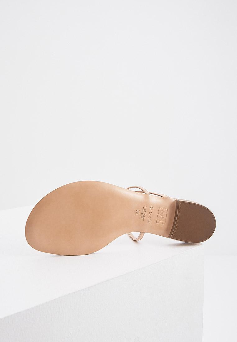 Женские сандалии Casadei 1N168S010MC0600: изображение 5