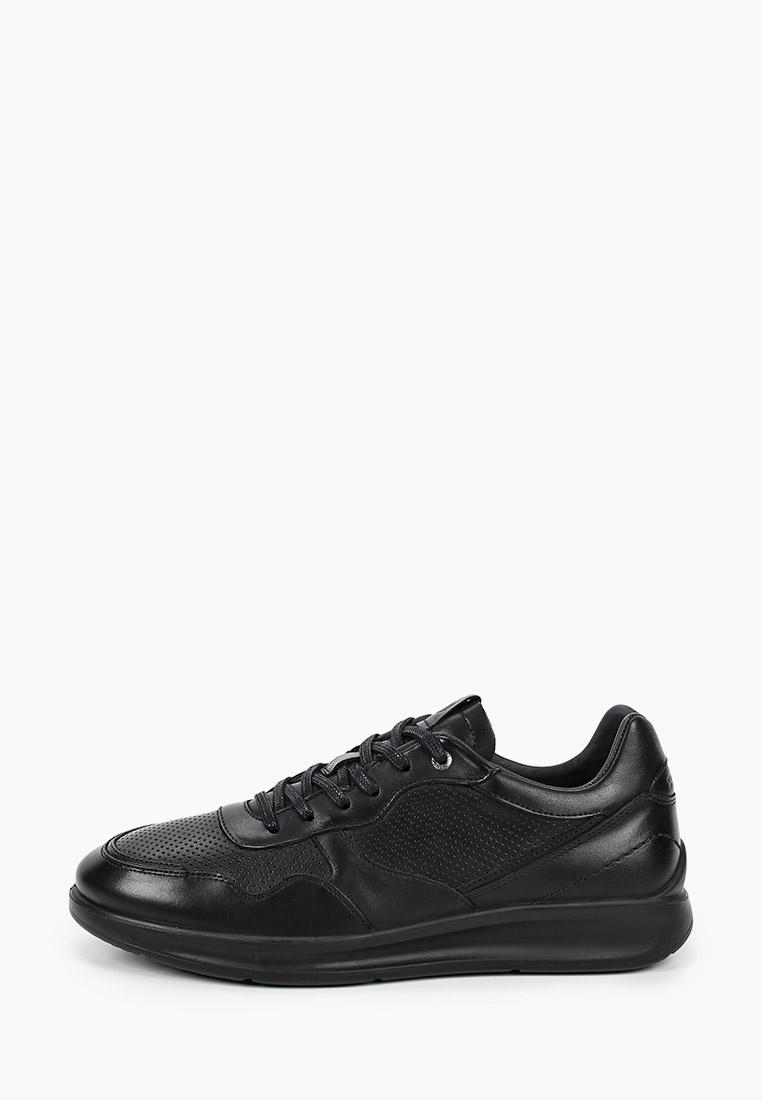 Мужские кроссовки SALAMANDER (Саламандер) 31-50901-01