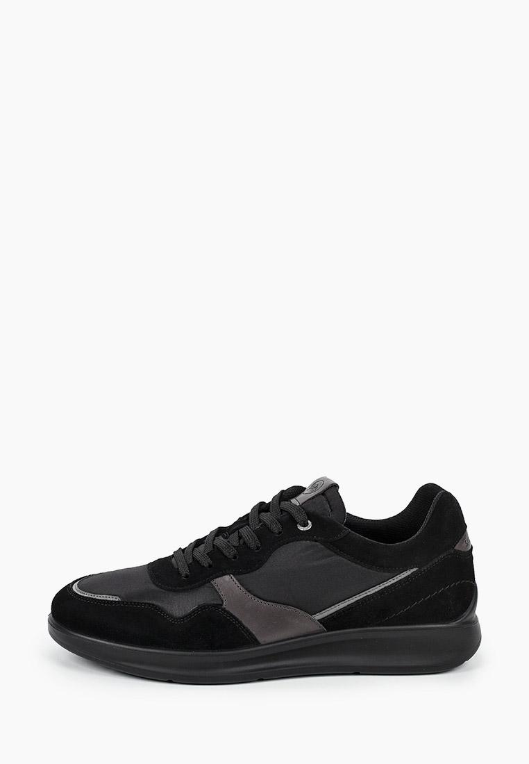 Мужские кроссовки SALAMANDER (Саламандер) 31-50901-21