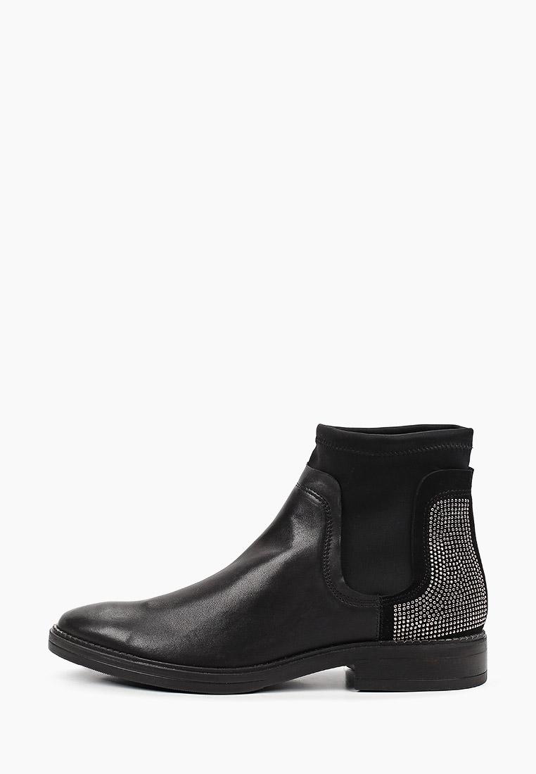 Женские ботинки Tosca Blu SF1911S205: изображение 1